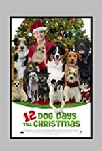 Watch 12 Dog Days Till Christmas