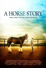 Watch A Horse Story