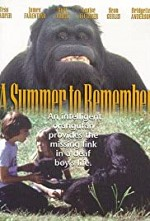 Watch A Summer to Remember