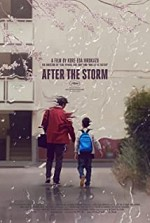 Watch After the Storm