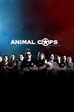 Watch Animal Cops: Houston