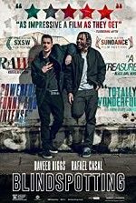 Watch Blindspotting