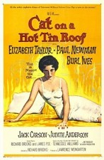Watch Cat on a Hot Tin Roof