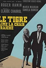 Watch Code Name: Tiger