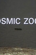 Watch Cosmic Zoom