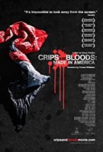Watch Crips and Bloods: Made in America
