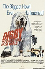 Watch Digby, the Biggest Dog in the World