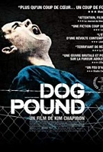 Watch Dog Pound