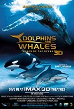 Watch Dolphins and Whales 3D: Tribes of the Ocean