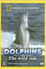 Watch Dolphins: The Wild Side
