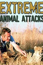 Watch Extreme Animal Attacks