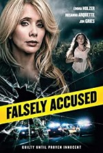 Watch Falsely Accused