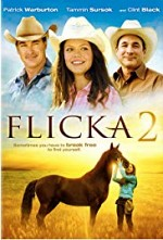 Watch Flicka 2: Friends Forever