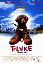 Watch Fluke