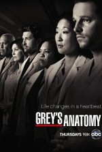 Grey's Anatomy SE