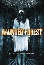 Watch Haunted Forest