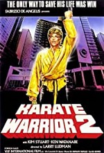 Watch Karate Warrior 2