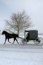 Watch Leaving Amish Paradise