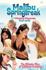 Watch Malibu Spring Break