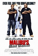 Watch Malibu's Most Wanted