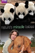 Nature's Miracle Babies S01E04