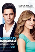 Necessary Roughness SE