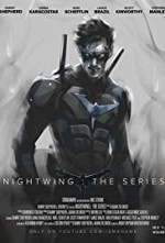Watch Nightwing: The Series