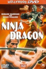 Watch Ninja Dragon