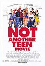 Watch Not Another Teen Movie