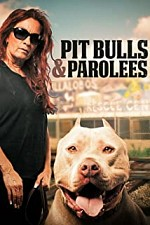 Pit Bulls and Parolees S09E100