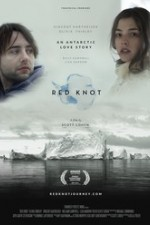 Watch Red Knot