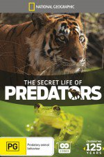Watch Secret Life of Predators