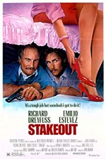 Watch Stakeout