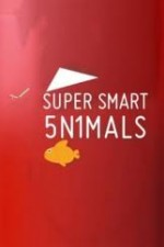 Super Smart Animals S01E02