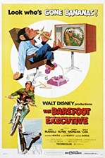 Watch The Barefoot Executive