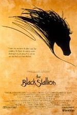 Watch The Black Stallion