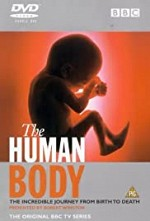 The Human Body SE