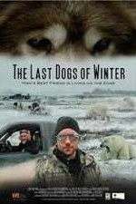 Watch The Last Dogs of Winter