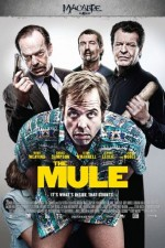 Watch The Mule