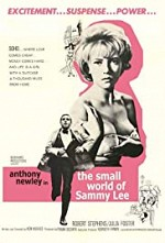 Watch The Small World of Sammy Lee