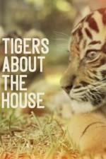 Tigers About the House SE
