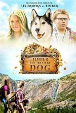 Watch Timber the Treasure Dog