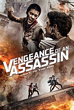 Watch Vengeance of an Assassin