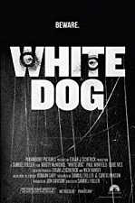 Watch White Dog