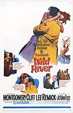 Watch Wild River